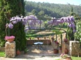 summer dining overlooking the vineyards - Villa Verona - Avinyonet del Penedes - rentals