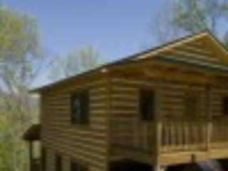 Over The Edge Cabin - Topton vacation rentals