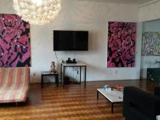Art gallery penthouse Ipanema up to 10 people with cinema 3D and netflix free access. - Rio de Janeiro vacation rentals