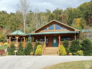 Native Winds Cabin -- Romantic One Bedroom with Hot Tub, Superb View, and Wi-Fi - Bryson City vacation rentals