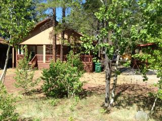 Cedar Cabin - Flagstaff vacation rentals