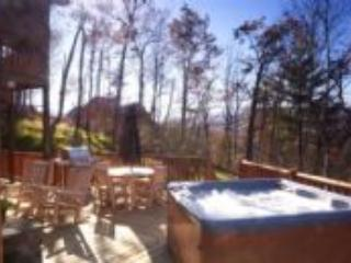 Watershed 11 & 12 COMBO - Bryson City vacation rentals