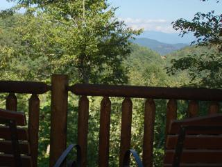 Moonstruck - Bryson City vacation rentals