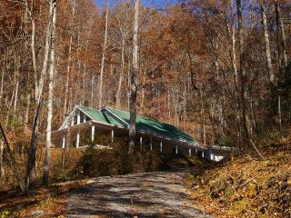 Rocky Creek Cottage - Bryson City vacation rentals