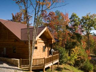 Stargazer - Bryson City vacation rentals