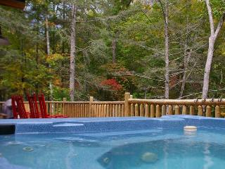 Independence Lodge - Bryson City vacation rentals