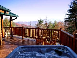 Nantahala Gorgeous - Bryson City vacation rentals