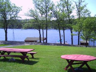 QUAKER LAKE HOUSE, BRACKNEY PA - Brackney vacation rentals