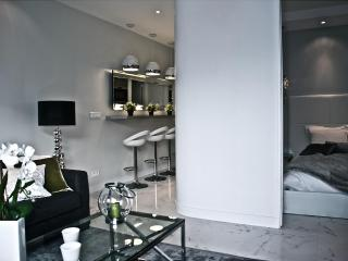 ***Last Minute AMAZING 1 Bedroom Apartment***Champs Elysees Elegance - London vacation rentals