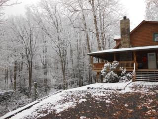 Creekside Mountain Log Cabin Home - Maggie Valley vacation rentals