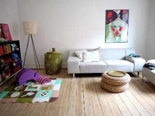 Open and bright Copenhagen apartment at Noerrebro - Copenhagen vacation rentals