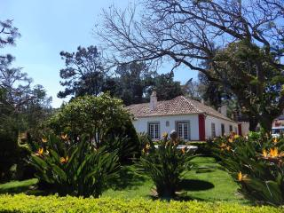 House with pool and wi fi in Sintra center - Sintra vacation rentals