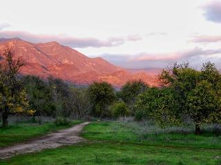The Muse Farm Property - Ojai vacation rentals