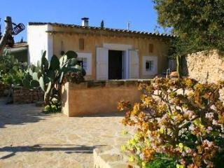 Rural Place WIFI Family Finca SAT - San Francisco Javier vacation rentals