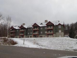 Lodges At Sunrise Village - Three bedroom Three bathroom Tastefully Decorated and Upgraded Townhouse Steps Away from the Sunrise - Killington Area vacation rentals