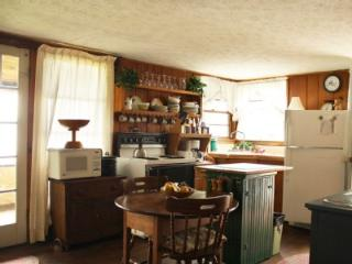 Quaint, Lakefront Cottage on Beautiful Seneca Lake - Penn Yan vacation rentals