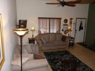 Awesome 2 Bedroom Condo in Apache Junction - Image 1 - Apache Junction - rentals