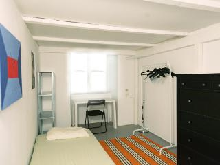 Room 8, quiet, safe and in the heart of Vienna! - Vienna vacation rentals
