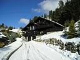 Chalet Moguls - Catered chalet in Meribel, 3 Valleys, French alps - Meribel - rentals