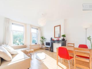 Booked Full - Central light apartment in Amsterdam, 2-4 p. - Amsterdam vacation rentals