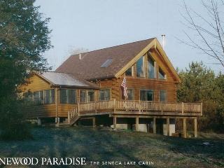 Escape to This Beautiful, Rural Lakefront Cabin! - Penn Yan vacation rentals
