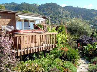 GORGEOUS  VIEWS OF THE OCEAN, HOT TUB, GARDEN - Stinson Beach vacation rentals