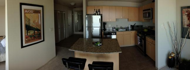 Panorama from inside the unit - 700sf convertible, 48th Floor, Big Balcony, next to Grant/millenium Park - Chicago - rentals