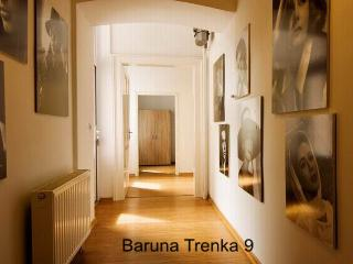 Veni Vidi Zagreb Apartments 500 m from City Center - Zagreb vacation rentals