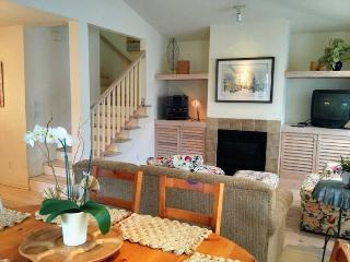 Hoopdee Scootee Suite - Saugatuck vacation rentals
