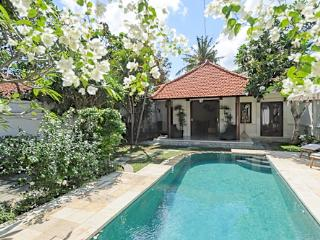 Quiet and Peaceful 2 bedroom Villa with Garden and Pool and a short walk to the Beach. - Sanur vacation rentals