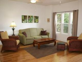 Living room with queen size sofa bed for extra guests - Hale Lau Hala Retreat, Pahoa, Hawaii - Pahoa - rentals