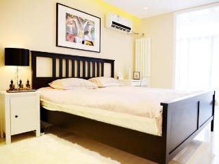 city center,morden & cozy 2bdr apt, up to 4 people - Beijing Region vacation rentals