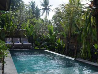 3 Bedroom with Private Pool - The Villa Nangka - Seminyak vacation rentals