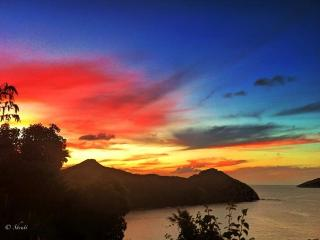 Private, Luxury 'Loveshack' Apt. ON THE WATER - Saint Thomas vacation rentals