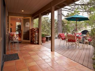 Idyllwild Lodge - 4 Bedrooms and Spa - Idyllwild vacation rentals