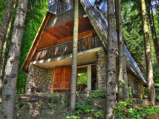 Cottage in the forest near Trencín, Slovakia - Slovakia vacation rentals