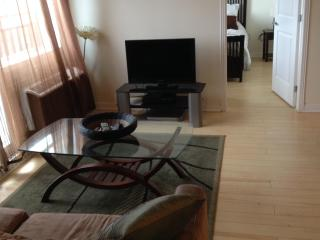 Montreal Downtown delux furnished Penthouse condo - Mont Tremblant vacation rentals