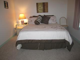 Special $69 immaculate Walk in Sleeps up to 3 - Branson vacation rentals