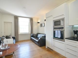 ***Last Minute 2 Bedroom Apartment*** Hyde Park Ivory - London vacation rentals