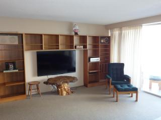 Lovely 2 Bedroom on Catherdral Hill - San Francisco vacation rentals
