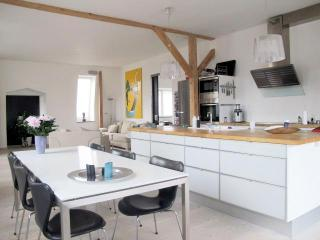 Fantastic, luxury, modern,Scandinavian - Copenhagen vacation rentals
