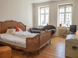 You can't get any more central Than this - Copenhagen vacation rentals