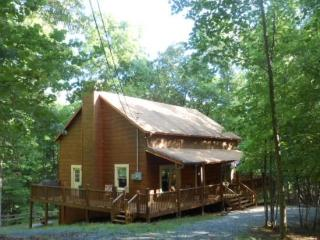 Welcome to Three Bears Lodge - Ellijay vacation rentals