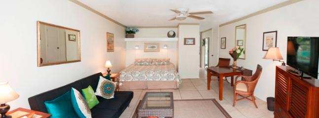 LOCATION, LOCATION, - NO CAR NEEDED - CLOSE TO PIER, FARMER'S MARKET - Image 1 - Kailua-Kona - rentals