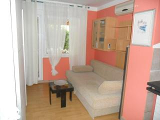 Apartment Vedrana - 46081-A1 - Vodice vacation rentals