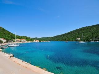 Apartments Rino - 53921-A1 - Lastovo vacation rentals