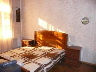 Excellent 3-bedroom apartment in the downtown, Moscow - Moscow vacation rentals