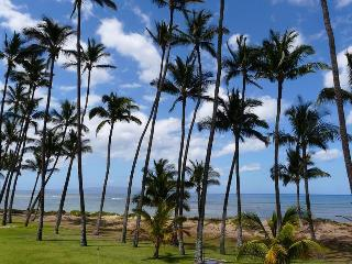Hale Kai O' Kihei 1 Bedroom Ocean View 108 - Mauna Lani vacation rentals