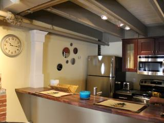 Spectacular 2 bedroom 2 bath loft in the heart of downtown Boston - Greater Boston vacation rentals