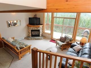 Luxury mountain getaway! - Courtenay vacation rentals